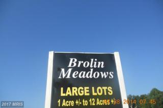 Houston Branch Road, Federalsburg, MD 21632 (#CM8416105) :: LoCoMusings