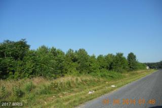 Houston Branch Road, Federalsburg, MD 21632 (#CM8416128) :: LoCoMusings