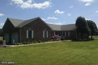 6423 Noble Road, Federalsburg, MD 21632 (#CM8639944) :: Pearson Smith Realty