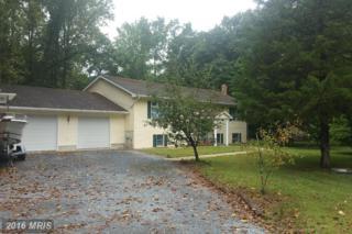 25421 Shad Run Way, Greensboro, MD 21639 (#CM9727519) :: Pearson Smith Realty