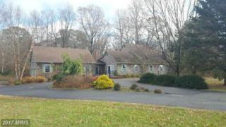 8821 Tuckahoe Road, Denton, MD 21629 (#CM9823547) :: Pearson Smith Realty