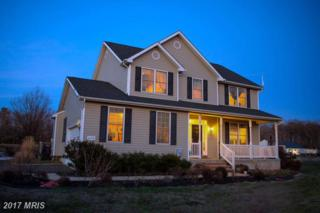26938 Anthony Mill Road, Denton, MD 21629 (#CM9857601) :: Pearson Smith Realty