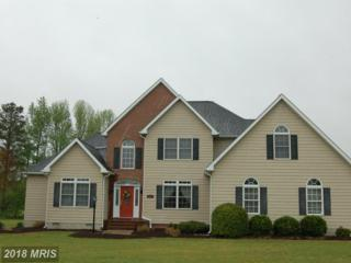8291 Clearfield Road, Denton, MD 21629 (#CM9917090) :: Pearson Smith Realty