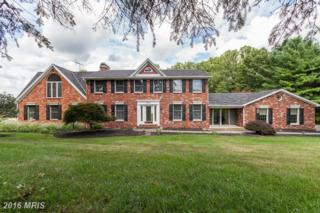 3818 Mount Airy Drive, Mount Airy, MD 21771 (#CR9763042) :: Pearson Smith Realty