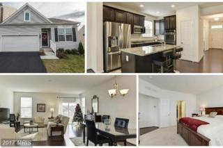 185 Greenvale Mews Drive #56, Westminster, MD 21157 (#CR9819408) :: Pearson Smith Realty