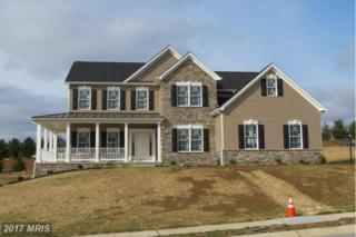 6693 Chateau Bay Court, Sykesville, MD 21784 (#CR9847068) :: LoCoMusings