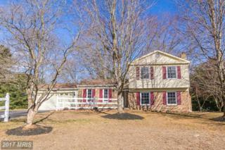 522 Tanglewood Drive, Sykesville, MD 21784 (#CR9864688) :: Pearson Smith Realty