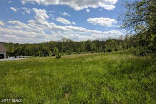 36-LOT Dream Mint Way, Westminster, MD 21157 (#CR9880787) :: Pearson Smith Realty