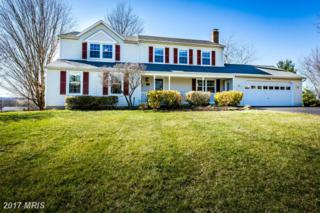 6602 Wind Ridge Road, Mount Airy, MD 21771 (#CR9886494) :: Pearson Smith Realty