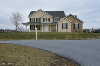 2406 Clover Leaf Drive, Finksburg, MD 21048 (#CR9888311) :: LoCoMusings