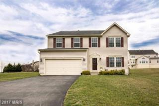 193 Wyndtryst Drive, Westminster, MD 21158 (#CR9896713) :: Pearson Smith Realty