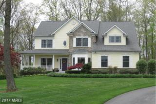 2028 Song Sparrow Court, Hampstead, MD 21074 (#CR9915727) :: Pearson Smith Realty