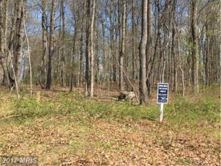 Krom Drive, Manchester, MD 21102 (#CR9915921) :: Pearson Smith Realty