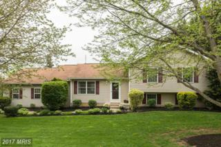 1015 Collins Avenue, Sykesville, MD 21784 (#CR9918358) :: Pearson Smith Realty