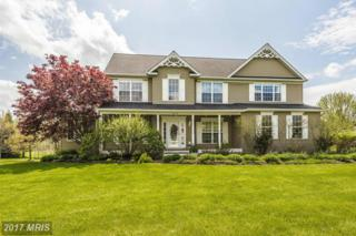 3719 Falling Green Way, Mount Airy, MD 21771 (#CR9927688) :: Pearson Smith Realty