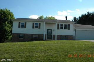 1703 Valley Drive, Westminster, MD 21157 (#CR9927930) :: Pearson Smith Realty