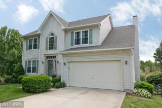 14 Golden Eagle Court, Westminster, MD 21158 (#CR9948028) :: Pearson Smith Realty