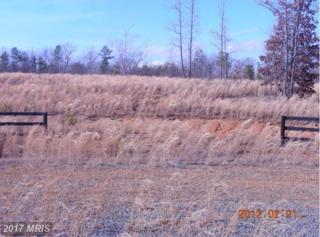 Trotting Trial, Richardsville, VA 22736 (#CU7783163) :: LoCoMusings
