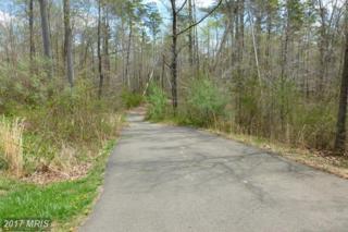 0 Atkins Trail, Amissville, VA 20106 (#CU8686084) :: Pearson Smith Realty