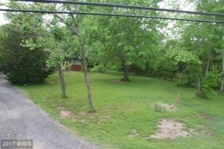 16328 Brandy Road, Culpeper, VA 22701 (#CU9712195) :: Pearson Smith Realty