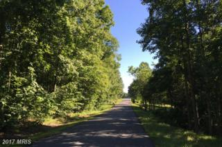 Stonehouse Mountain Road, Culpeper, VA 22701 (#CU9735911) :: LoCoMusings
