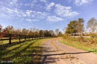 15198 Reva Road, Reva, VA 22735 (#CU9807086) :: Pearson Smith Realty