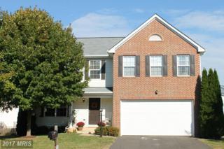 2214 Cottonwood Lane, Culpeper, VA 22701 (#CU9826184) :: LoCoMusings