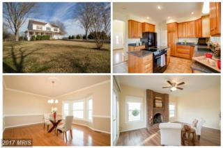 7248 Deer View Trail, Rixeyville, VA 22737 (#CU9832402) :: LoCoMusings