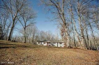 20653 Clover Hill Road, Remington, VA 22734 (#CU9842034) :: LoCoMusings
