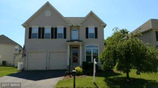 18109 Scenic Creek Lane, Culpeper, VA 22701 (#CU9866569) :: Pearson Smith Realty