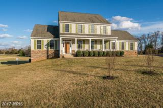 11437 Rotherwood Drive, Culpeper, VA 22701 (#CU9868076) :: Pearson Smith Realty