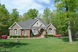 15198 Rillhurst Drive, Culpeper, VA 22701 (#CU9875510) :: Pearson Smith Realty