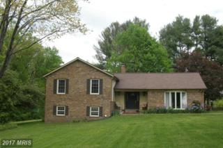 13223 Alum Springs Road, Culpeper, VA 22701 (#CU9880418) :: Pearson Smith Realty