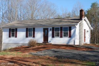 10318 Lanes Farm Lane, Culpeper, VA 22701 (#CU9890263) :: Pearson Smith Realty