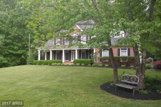 2226 Somerset Drive, Jeffersonton, VA 22724 (#CU9891420) :: Pearson Smith Realty