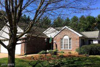 1510 Addie Lane, Culpeper, VA 22701 (#CU9895977) :: Pearson Smith Realty