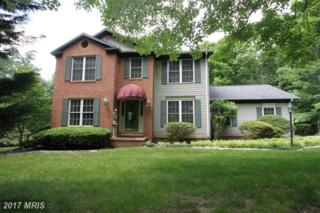 19025 Bleumont Court, Culpeper, VA 22701 (#CU9912930) :: Pearson Smith Realty