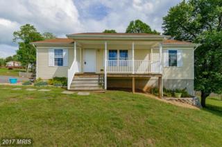 12199 Horseshoe Drive, Culpeper, VA 22701 (#CU9936727) :: Pearson Smith Realty