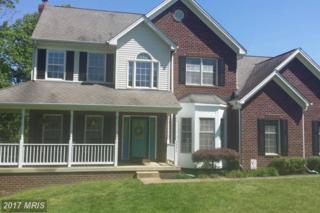 2395 Alamance Drive, Amissville, VA 20106 (#CU9942908) :: Pearson Smith Realty
