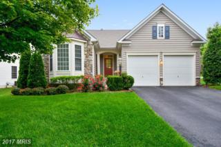 602 Pelhams Reach Drive, Culpeper, VA 22701 (#CU9955410) :: Pearson Smith Realty