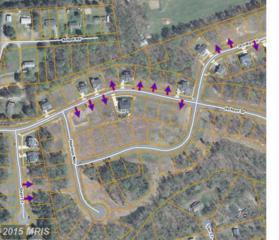 17452 Jackson Drive, Bowling Green, VA 22427 (#CV7724152) :: Pearson Smith Realty