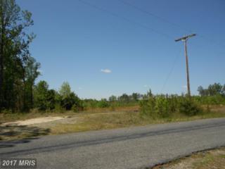 0 Bull Church Road, Ruther Glen, VA 22546 (#CV8736115) :: Pearson Smith Realty