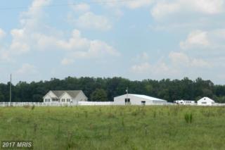 9315 Paige Road, Woodford, VA 22580 (#CV9827609) :: LoCoMusings