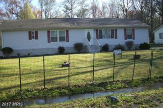 4810 Webster Street, Federalsburg, MD 21632 (#DO9611373) :: Pearson Smith Realty