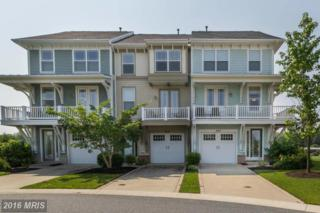 2810 Persimmon Place C3, Cambridge, MD 21613 (#DO9628993) :: Pearson Smith Realty