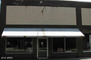 516 Race Street, Cambridge, MD 21613 (#DO9698590) :: Pearson Smith Realty
