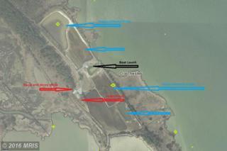 2209 Asquith Island Road, Crapo, MD 21626 (#DO9776541) :: Pearson Smith Realty