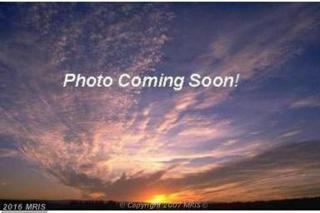 Andrews Road, Crapo, MD 21626 (#DO9791021) :: LoCoMusings