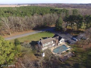 6136 Suicide Bridge Road, East New Market, MD 21631 (#DO9794611) :: Pearson Smith Realty