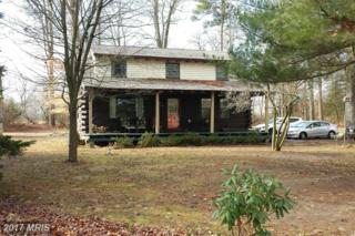 3311 Woodland Acres Road, East New Market, MD 21631 (#DO9840272) :: LoCoMusings
